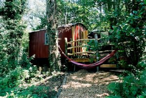 Glamping In Dorset – 10 Of The Best Locations