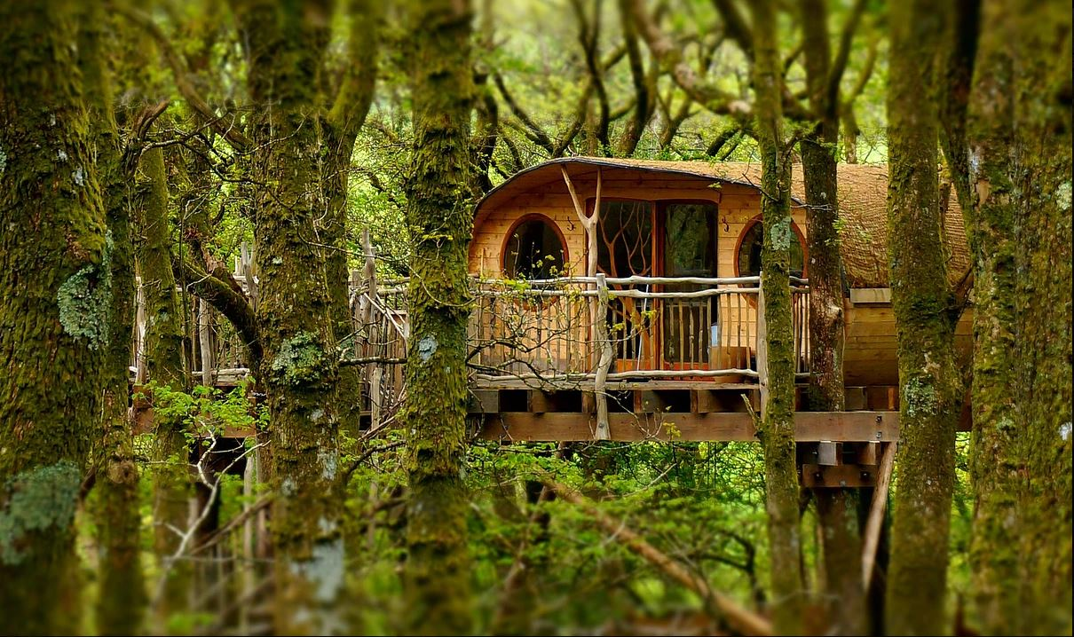 treehouses in wales