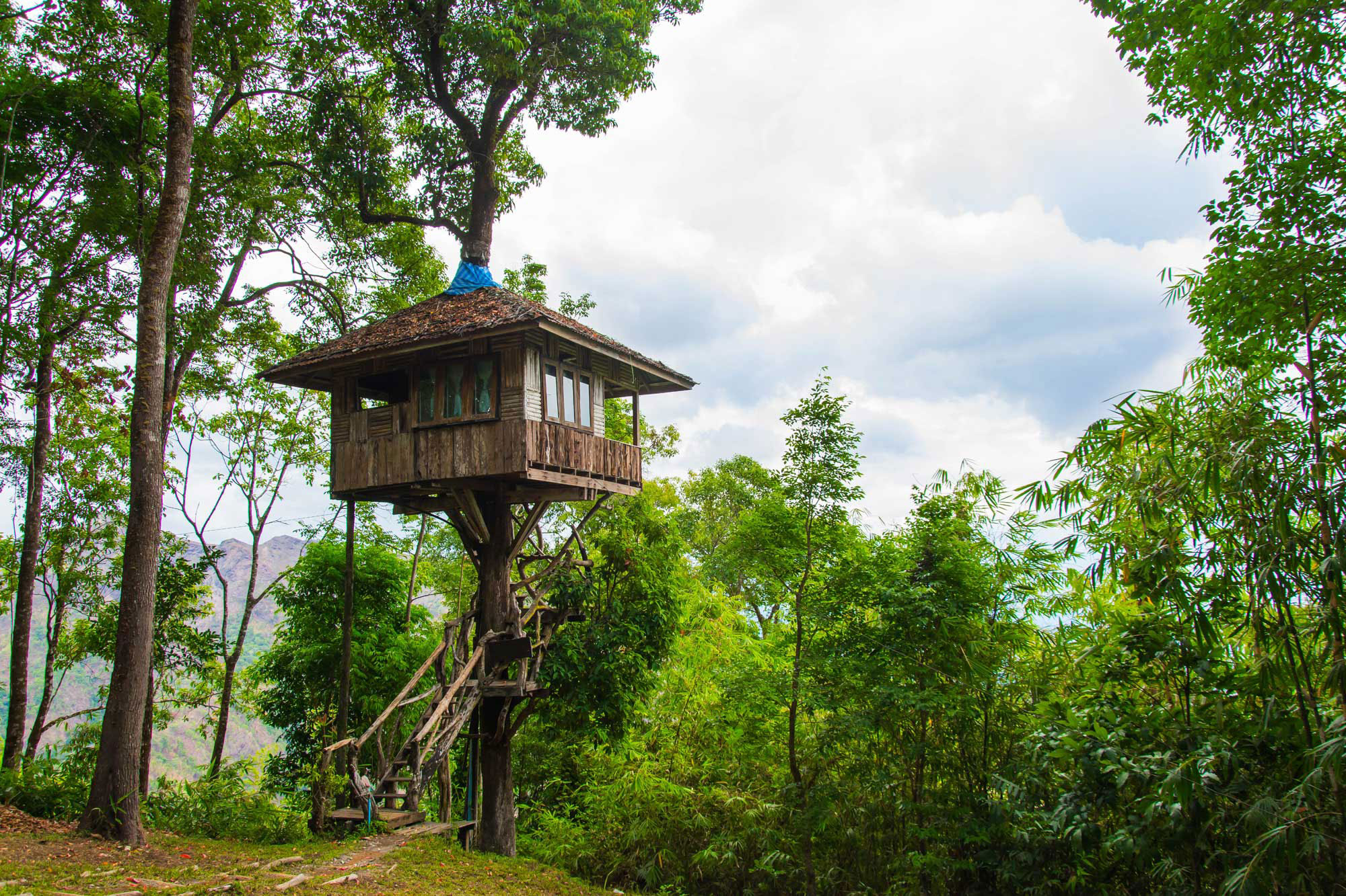 Tree Houses Unique Sleeps