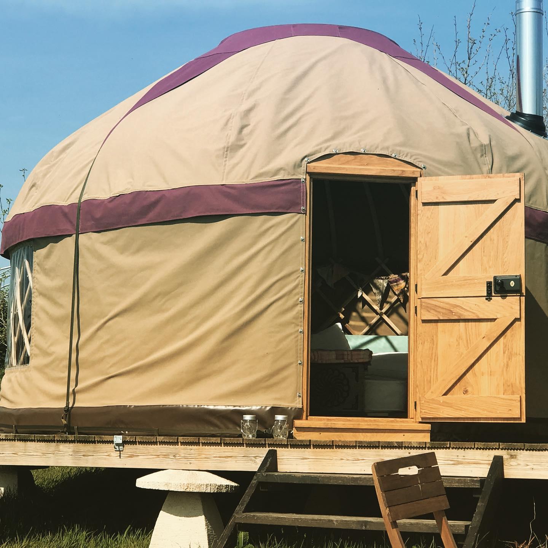 Dorset Forest Garden Glamping Yurt