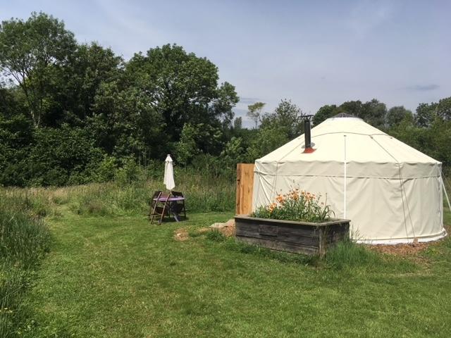 Mountain Cottage Yurts Glamping Dorset