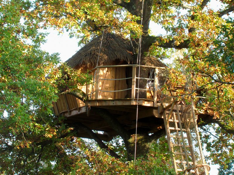 Grand Lacs Treehouse