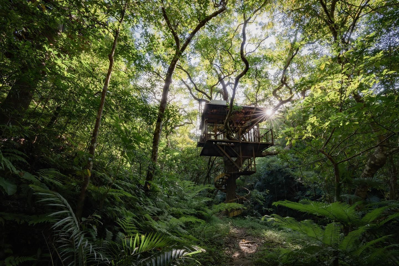 Treeful Treehouse Japan