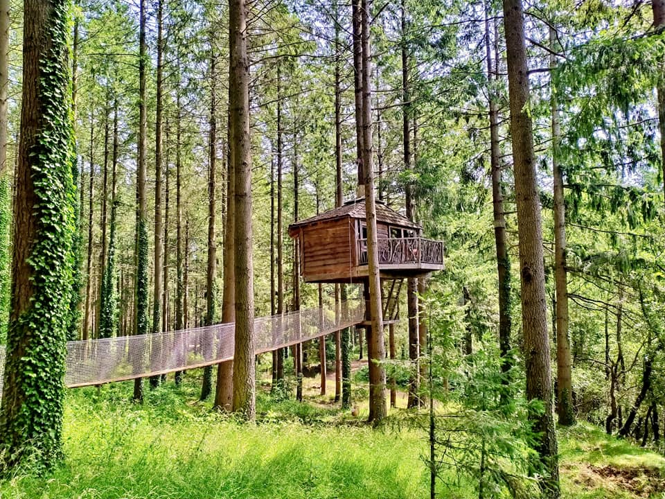 Treehouse in the woods Cabanas en los arboles