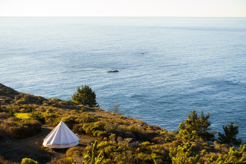 luxury tent in a coastal location