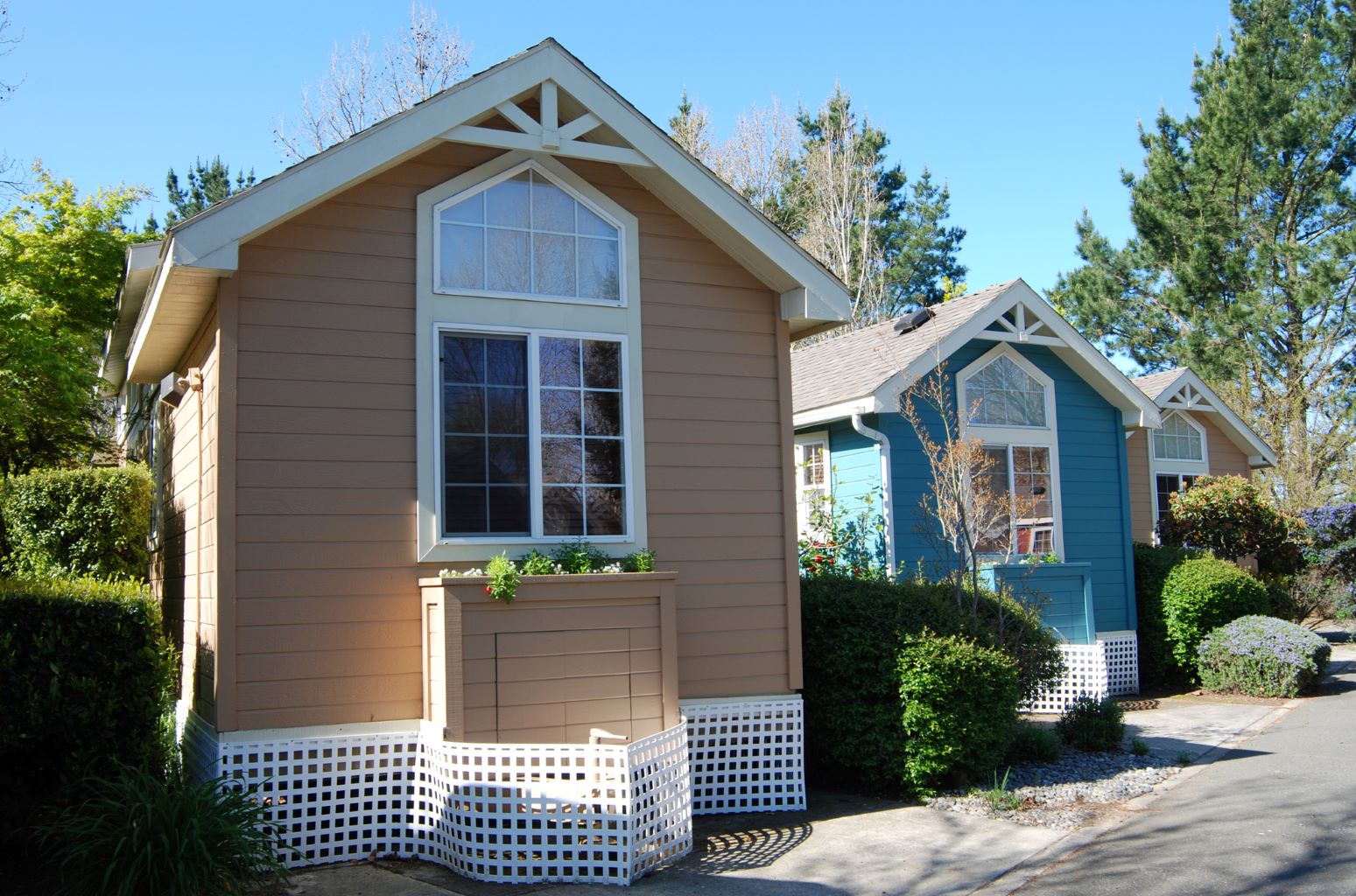 2 tiny houses next to each other in a tiny house community