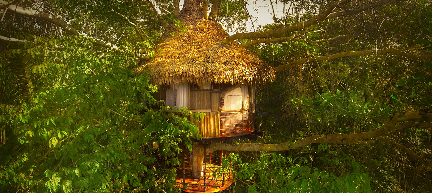 tree house lodge Peru