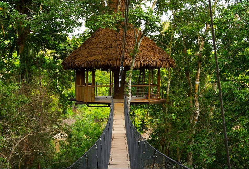 tree houses for rent around the world